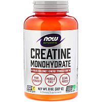 Now Foods, Спортивное питание, моногидрат креатина, чистый порошок, 227 г