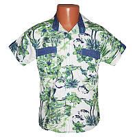 Рубашка  для мальчика  6-9 лет (116-134) 1096