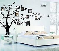 Декоративная  наклейка Семейное дерево большое  (250х180см)