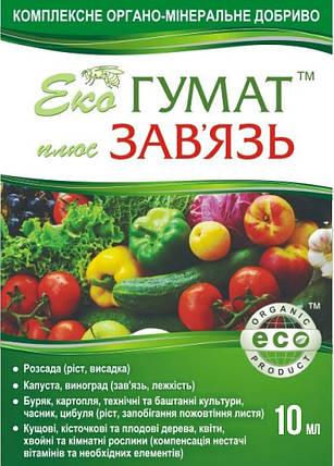 Стимулятор завязи Эко Гумат + Завязь 10 мл — восстановление плодородия почвы и питание растений, фото 2