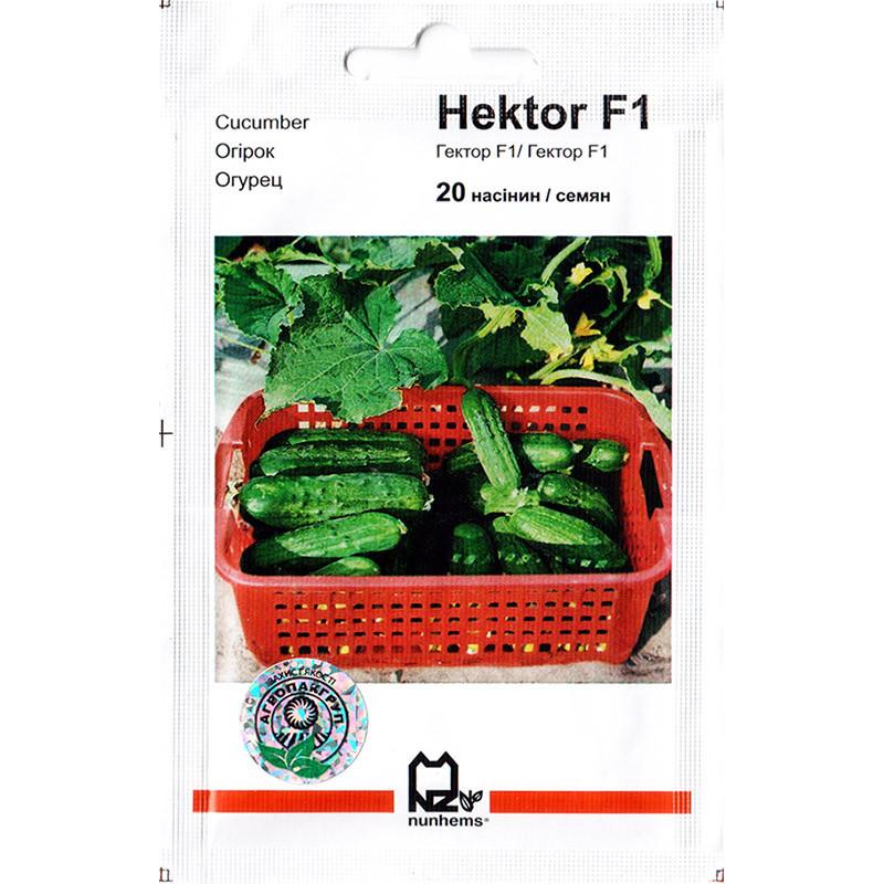 """Семена огурца кустового, ультрараннего, пригодного для засолки """"Гектор"""" F1 (20 семян) от Nunhems, Голландия"""