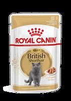 Влажный корм Royal Canin British Shorthair пауч для кошек британской породы 85 г *12 шт.