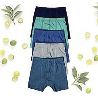 Плавки детские для мальчика, 92-110 размер