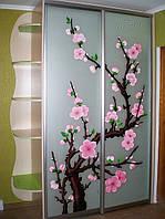 Шкаф-купе в детскую комнату для девочки