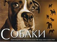 Книга. Собаки. Подарочные издания. Макгриви П. Джинни Э. Пеликан