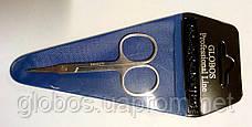 Профессиональные маникюрные ножницы для кутикулы Globos 9c210Z, фото 3