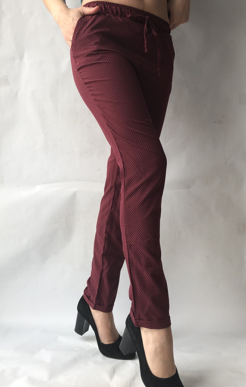 Летние женские брюки батал горох  бордо17