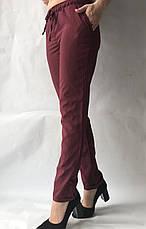 Летние женские брюки батал горох  бордо17, фото 3