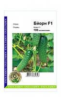 Огірок Бйорн F1 100 насінин, фото 1