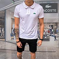 Мужской  летний  комплект поло+ шорты Лакоста чорно-белого цвета
