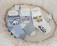 Хлопковые носки для малышей 12-18 мес ТМ Katamino 64896129731579
