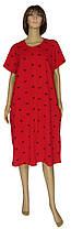 Халат домашний женский трикотажный на молнии 20013 Lоra стрейч-коттон Красный в бантик