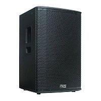 Активная акустическая система Park Audio T122-P