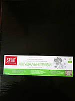 Зубная паста Splat Professional 100мл Лечебные травы