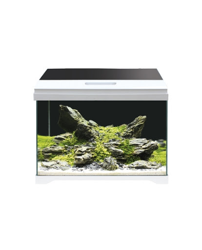 Аквариум AMTRA MODERN TANK 40 LED,  28 литров,, 42,5*23,5*36,5 см, стекло 5 мм, LED 9 Вт