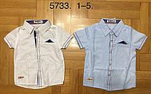 {есть:2 года,3 года,4 года} Рубашка для мальчиков Buddy Boy, Артикул: 5733