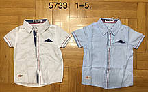 {есть:3 года 98 СМ} Рубашка для мальчиков Buddy Boy, Артикул: 5733 [3 года 98 СМ]
