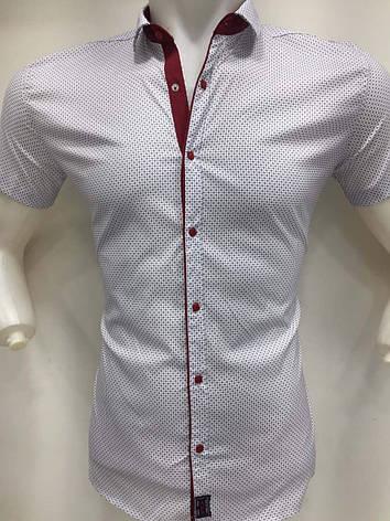 Белая рубашка короткий рукав AND с принтом, фото 2