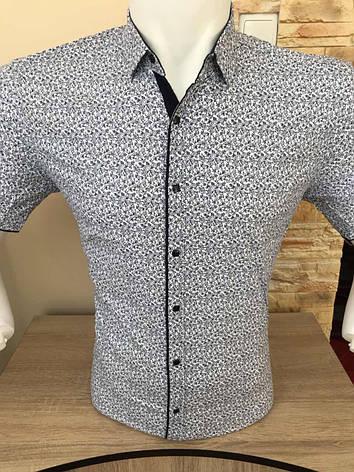 Рубашка короткий рукав AND с принтом, фото 2