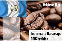 Гватемала Пакамара