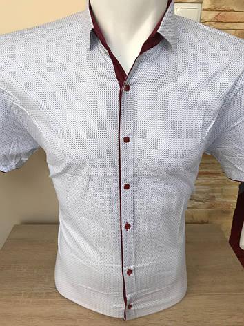 Сорочка короткий рукав AND, фото 2