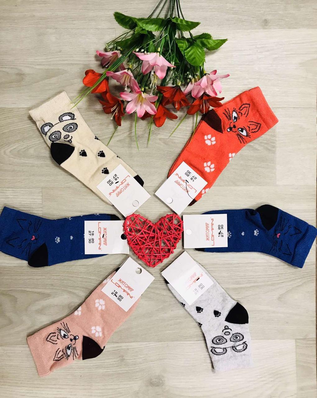 Шкарпетки дитячі демісезонні бавовна Житомир ТМ LOMANI розмір 18-20 (27-30) асорті