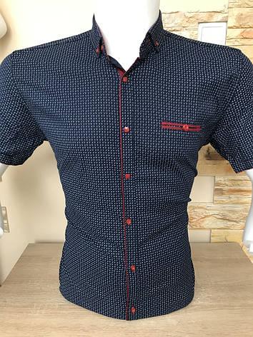 Сорочка короткий рукав X-port з принтом, фото 2