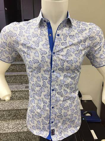 Рубашка короткий рукав X-Port узор, фото 2