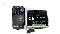 Комплект для автоматики Came Gant RxMulti и 100 пультов Nice Flo2-rs (hub_hbIz85761)