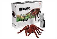 Радиоуправляемый паук 787 большой тарантул HN