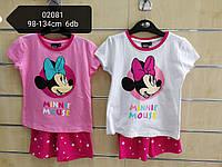 Комплект 2 в 1 для девочек оптом, Disney, 98-134 см,  № 02081
