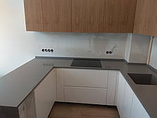 Стільниця та мийка з кварцового каменю Lotte Radianz CG 910, фото 3