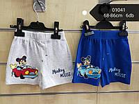 Шорты для мальчика оптом, Disney, 68-86 см,  № 01041