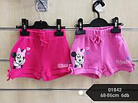 Шорты для девочек оптом, Disney, 68-86 см,  № 01042