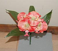 Т - 87 Орхидея  5 голов  20х8 см