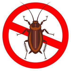 Средства от тараканов и клопов