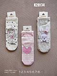 Ошатні шкарпетки для дівчаток ТМ Katamino р. 5-6 (24-26 см), фото 4