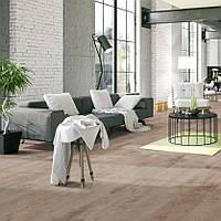 Swiss Krono Group, Noblesse, 3953 Platinum Birch