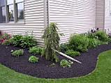 Бордюрная лента садовая Альта-Профиль расширенная 0,5х200х9000 мм коричневый от производителя, фото 2