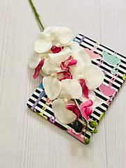 Ветка орхидеи фаленопсис 78 см белая с  розовинкой