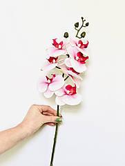 Искусственные орхидеи Real Touch розово - белая