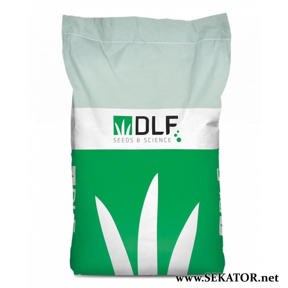Газонна трава спортивна DLF Trifolium Плейграунд (Данія)