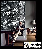 Керамограніт Imola - The Room GRA AN6 12 RM 1200х600, фото 2