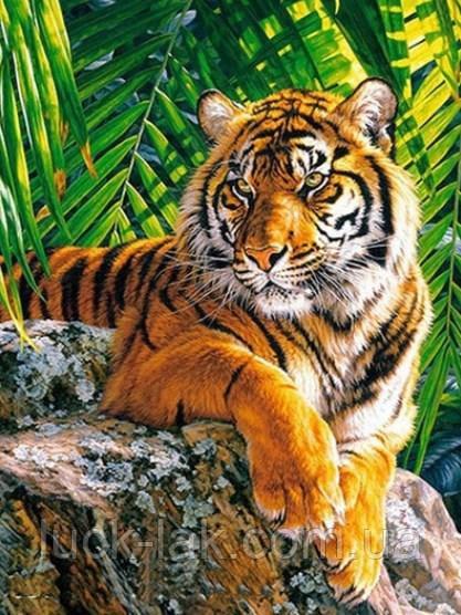 Алмазная вышивка тигр 20х30 см, полная выкладка, квадратные стразы