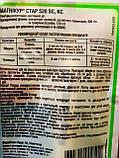 """Фунгіцид мезостемно-системної дії """"Флінт Стар"""" 520 SC, КС 5 мл на 10 літрів води, """"Bayer"""", Німеччина, фото 2"""