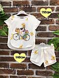 Комплект  для девочек Little Star оптом р.146 и 158, фото 2