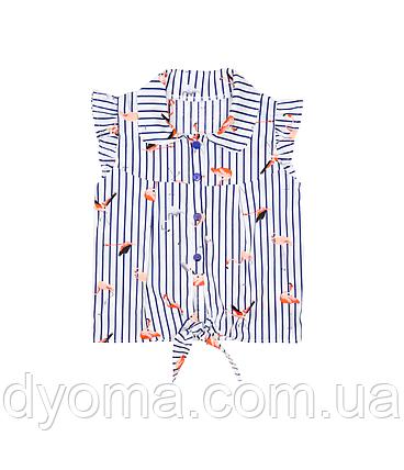 """Детская блуза  """"Фламинго"""" для девочек, фото 2"""