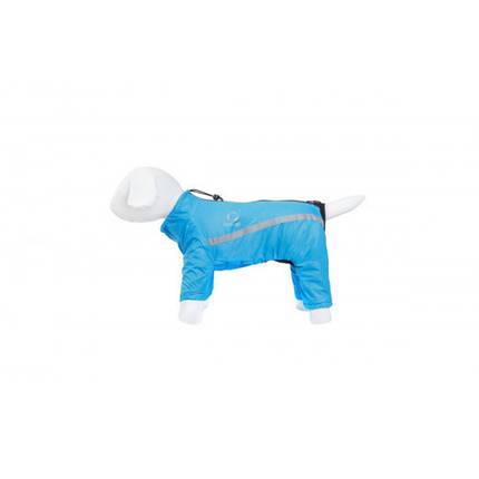 Дождевик Теремок M34 для собак, синий, фото 2
