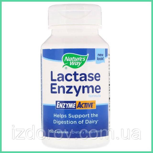 Nature's Way, Лактаза, Lactase, При лактазной недостаточности, 100 капсул. США