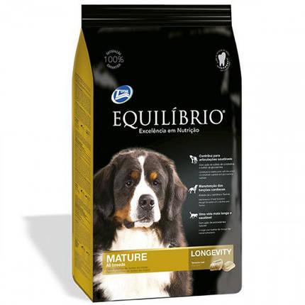 Сухой корм Equilibrio Dog для пожилых или малоактивных собак средних и крупных пород, 2 кг, фото 2